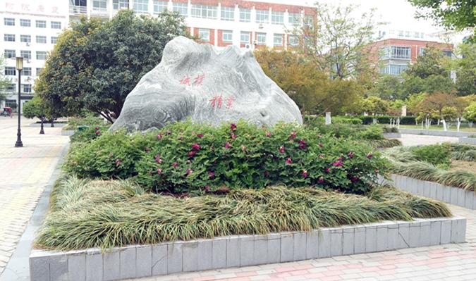 漯河医专会议室音视频系统由PRS打造