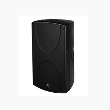 S1200H 内置2分频10英寸中高频扬声器系统