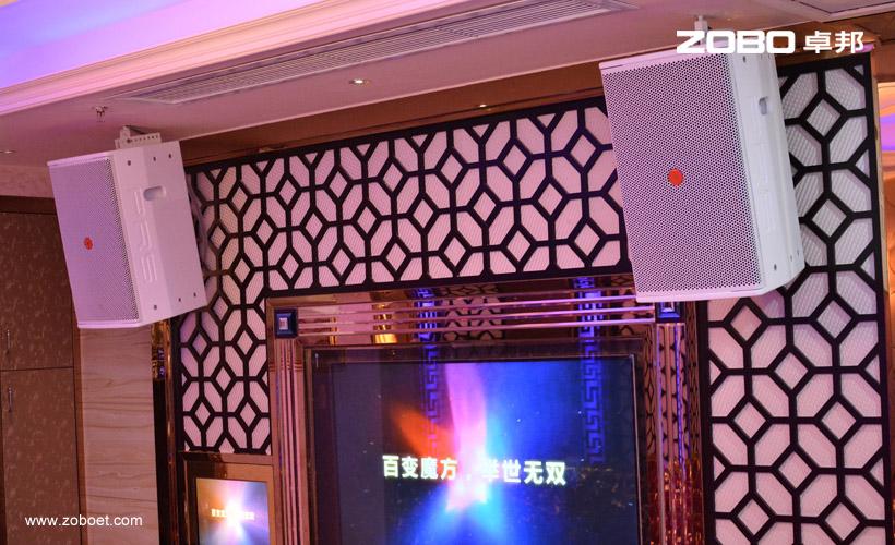 重庆紫缘国际娱乐会娱乐扩声项目2